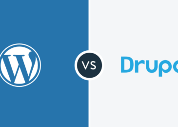 WordPress vs Drupal: Select the Best CMS Platform