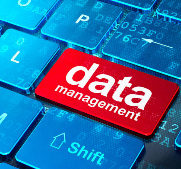 4 Common Styles To Master Data Management