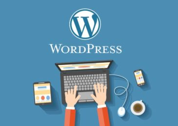 47 WordPress Statistics We Bet You Didn't Know in 2020 – Infographic